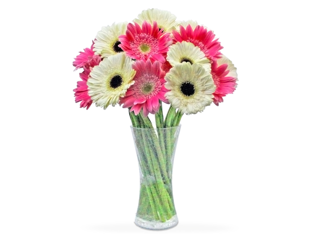 Florist Flower in Vase - Gerbera Florist vase decor G01 - L36509341 Photo