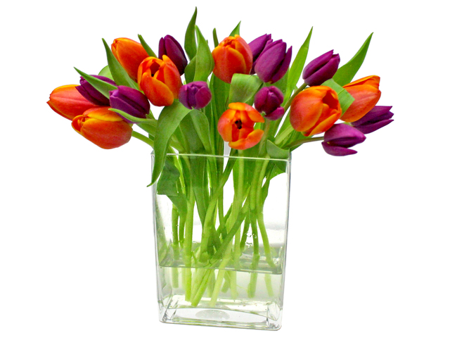 Florist Flower in Vase - Tulip Florist Vase Decor V1 - L3135116 Photo