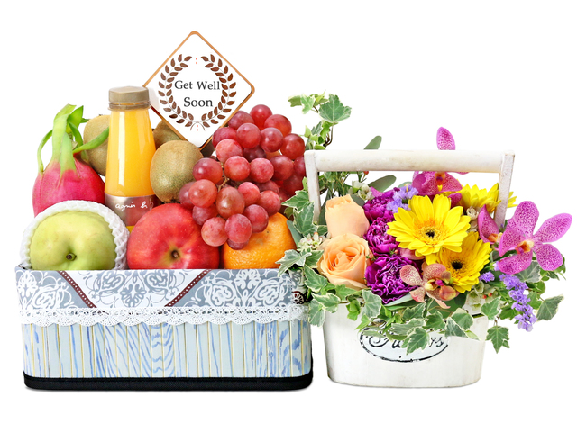 Fruit Basket - recovery basket G5 - L76602204 Photo