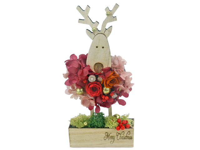 Gift Accessories - Find the Rudolf Preserved Flower M30 - L36515512 Photo