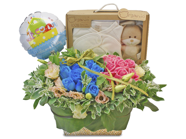 New Born Baby Gift - Baby Gift Flower Set F1 - L85195 Photo