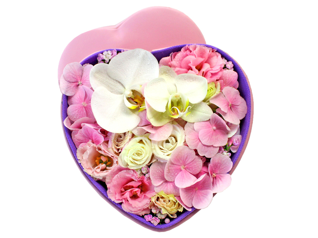 Order Flowers in Box - Hydrangea Box Flower 1 - L156371 Photo