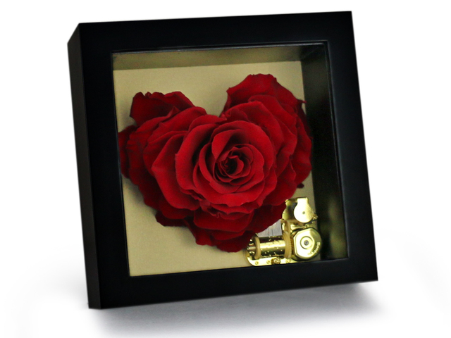 Preserved Forever Flower - Captured Romance Musical Preserved Flower Box M50 - L36515279 Photo