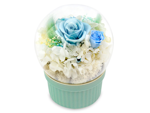 Preserved Forever Flower - Music Box Preserved Flower M36 - L36515393 Photo