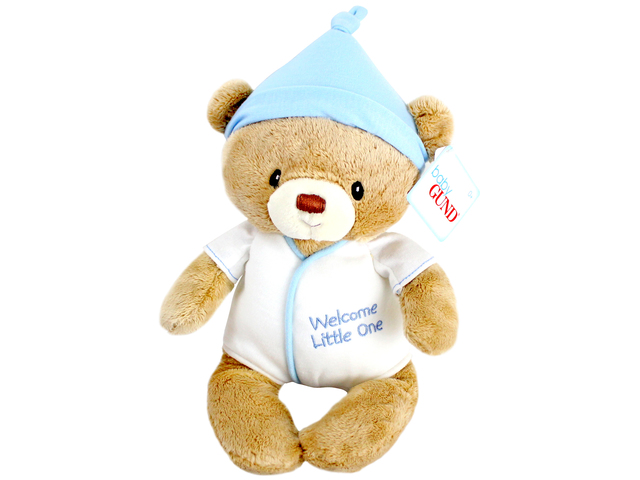 Teddy Bear n Doll - Baby GUND Bear(Boy) - L116472 Photo