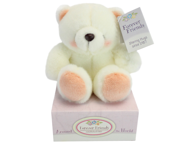 Teddy Bear n Doll - Hallmark Forever Friends White Teddy - L134755 Photo