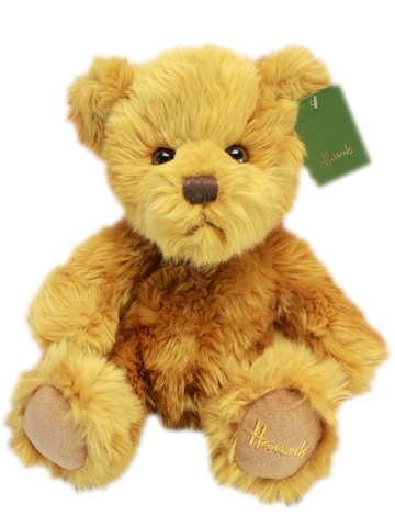 Teddy Bear n Doll - Harrods Classic Brown Bear - L153981 Photo