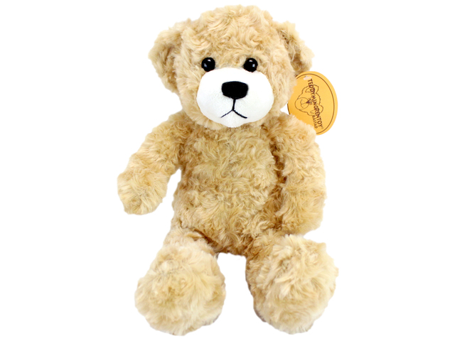 Teddy Bear n Doll - Teddy Min Grentoy Bastad(Boy) - L116307 Photo