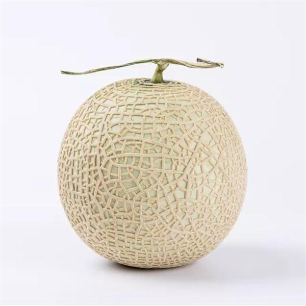 Greenhouse Melon Taste First Rate Give Gift Boutique Flower Shop Singing wolf and might refer to a spot where wolves gathered, but this might be folk etymology. give gift boutique