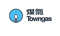 Hong Kong Flower Shop GGB client TOWNGAS