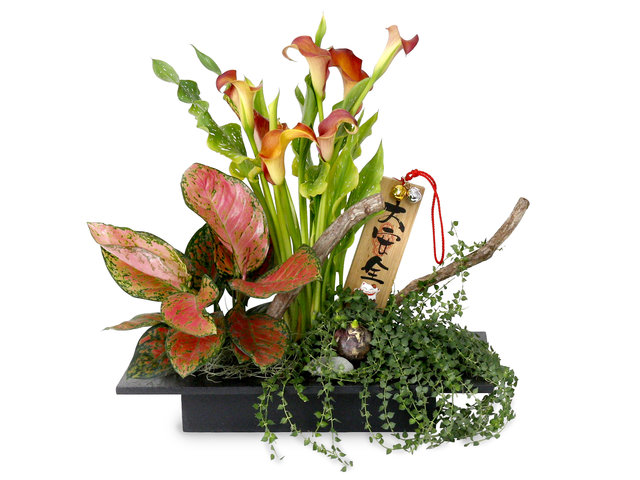 Florist Flower Arrangement - CNY florist Deco CL01 - L76610655 Photo
