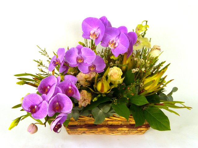 Florist Flower Arrangement - On Cloud Nine - P17321 Photo