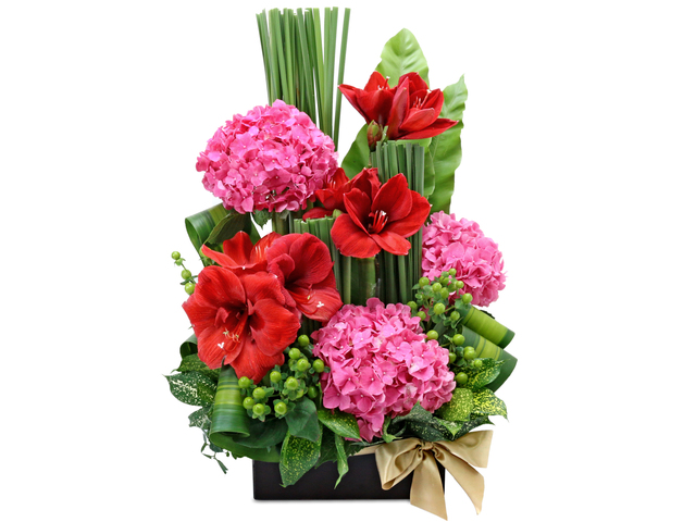 Florist Flower Arrangement - Red Amaryllis florist Deco B5 - L76605300 Photo