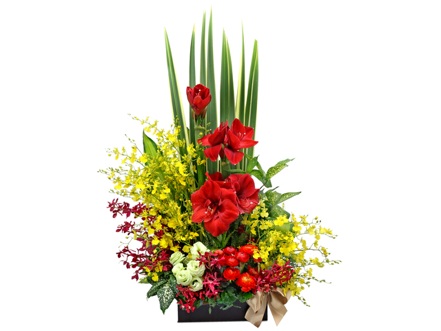 Florist Flower Arrangement - Red Amaryllis vase A13 - L76605199 Photo