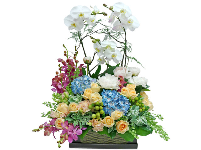 Florist Flower Arrangement - White Orchid flower box Decor T12 - L36669121 Photo