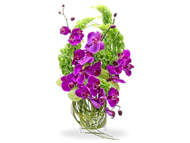 Florist Flower in Vase - Florist vase  F2 - L76600665 Photo