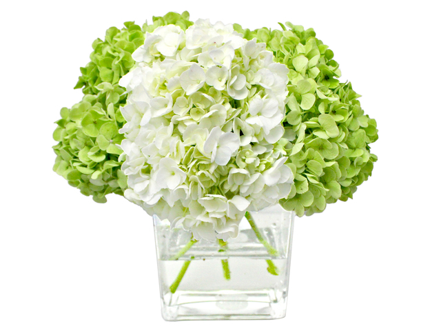 Florist Flower in Vase - Hydrangea Florist Vase Decor H12 - L3135363 Photo