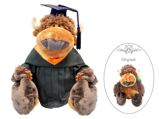 Florist Gift - Nici Graduation Doll - Buffalo - L3106140 Photo