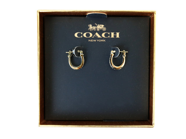 Gift Accessories - Coach Ear Ring - CN0528A3 Photo