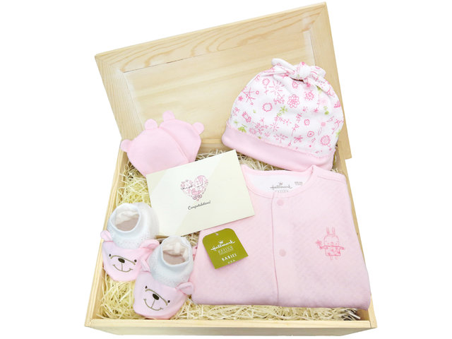 New Born Baby Gift - Baby Hampers 3A5 - BY0413A5 Photo