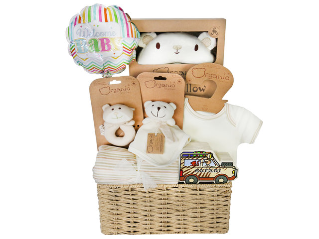 New Born Baby Gift - Baby Hampers B3 - BY1026B3 Photo