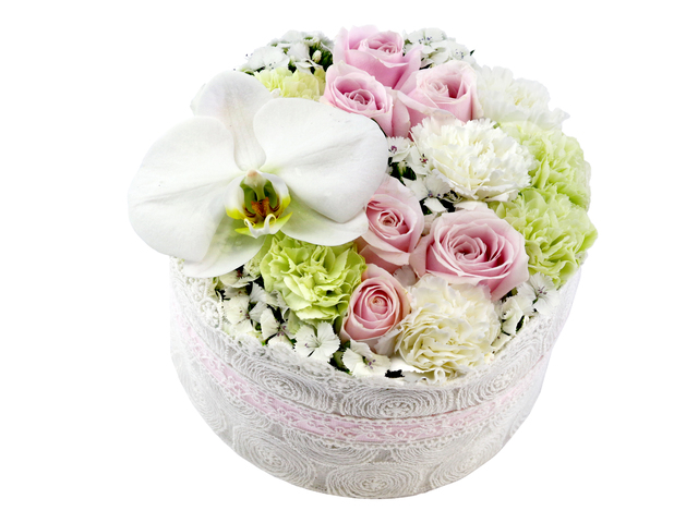 Order Flowers in Box - Carnations flower box 1 - L36514304 Photo