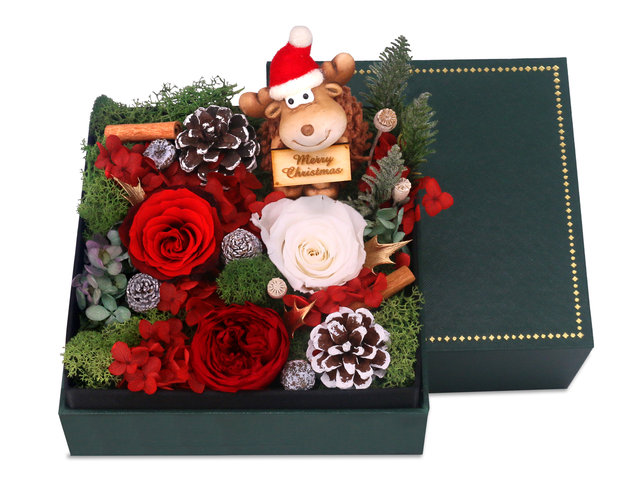 Preserved Forever Flower -  Christmas preserved flower gift box M61 - PR1108A3 Photo