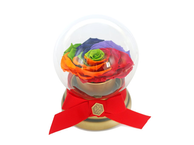 Preserved Forever Flower - 360 degree rotating rainbow rose music box - L45000091 Photo