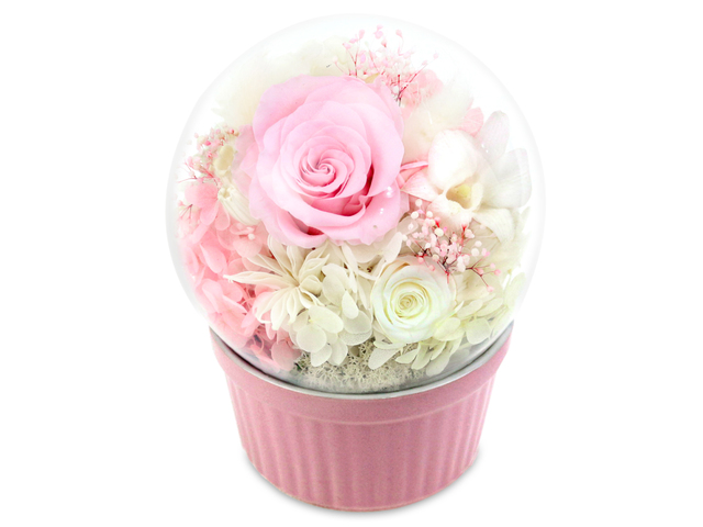 Preserved Forever Flower - Musical Preserved Flower Music Box M28 - L36515961 Photo