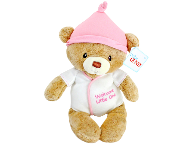 Teddy Bear n Doll - Baby GUND Bear(Girl) - L116474 Photo