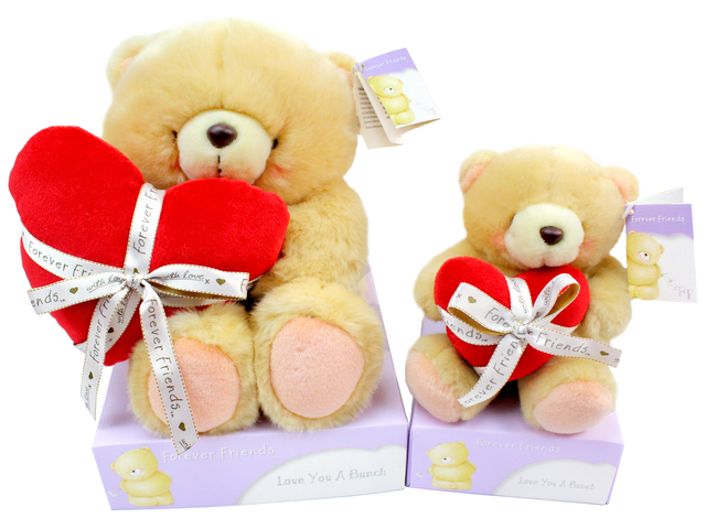 Teddy Bear n Doll - Hallmark Forever Friends Teddy - P18417 Photo