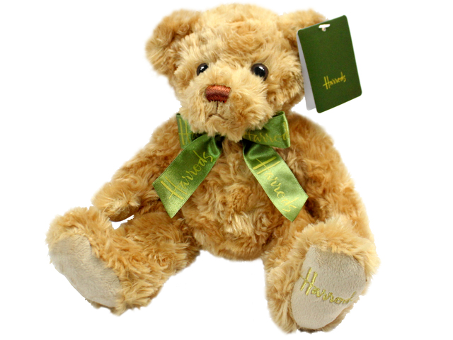 Teddy Bear n Doll - Harrods Frankie Bear - L153984 Photo