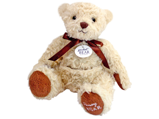 Teddy Bear n Doll - Pocket Bear(White) - L118050 Photo
