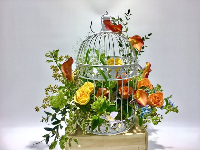 Weekly Import Flower - Limited Edition - The birdcage Flora Decoration LED06 - 1D0321A1 Photo