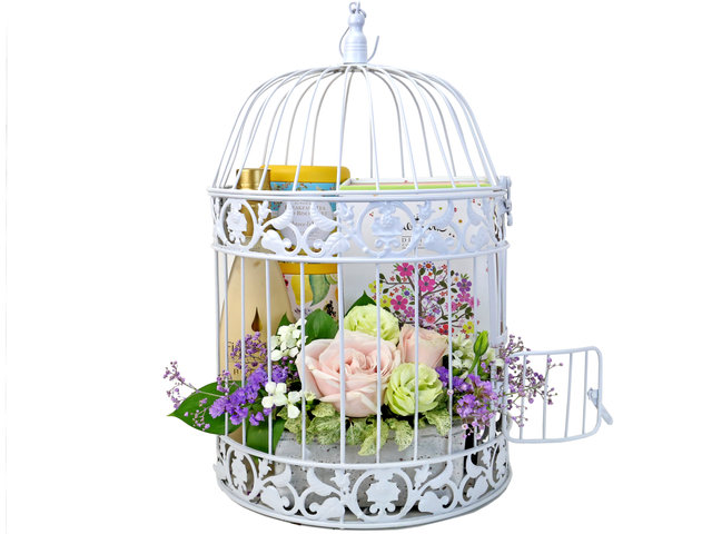 Wine n Food Hamper - Birdcage design gift hamper B1 - TNP0410A6 Photo