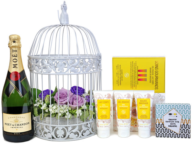 Wine n Food Hamper - Birdcage design gift hamper B2 - TNP0410A7 Photo