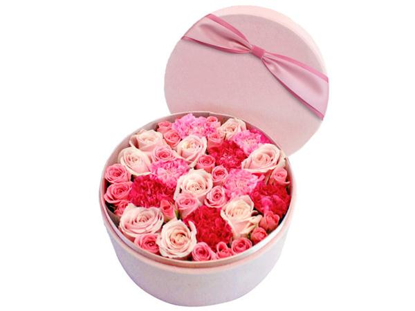Dedicate to her who loves you- Kenya Mini Rose