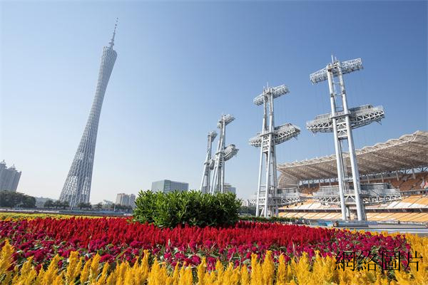 The Spring Festival Flower Market Is A Yearly Carnival Of Guangzhou People