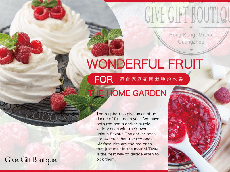 Wonderful fruit for home gardening – raspberries recipe – How to make Aussie favourite Pavlova