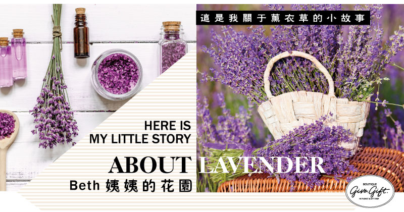 Here is my little story about lavender